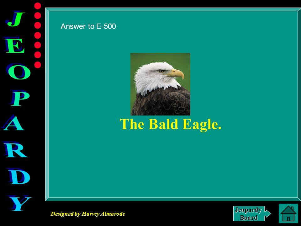 Answer to E-500 The Bald Eagle.