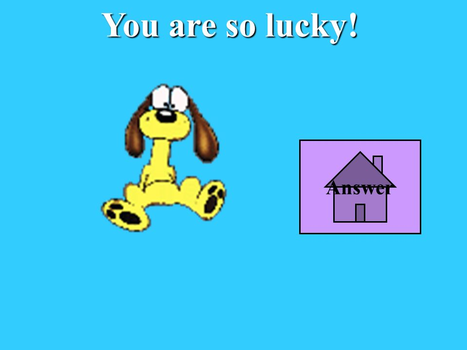 You are so lucky! Answer