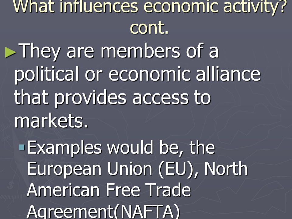 What influences economic activity cont.