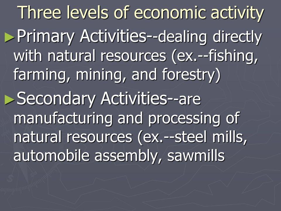 Three levels of economic activity