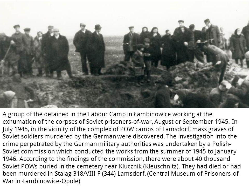 A group of the detained in the Labour Camp in Łambinowice working at the exhumation of the corpses of Soviet prisoners-of-war, August or September 1945.