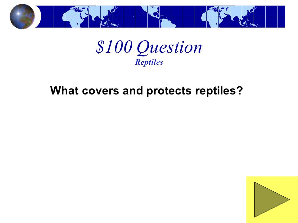 $100 Question Reptiles What covers and protects reptiles