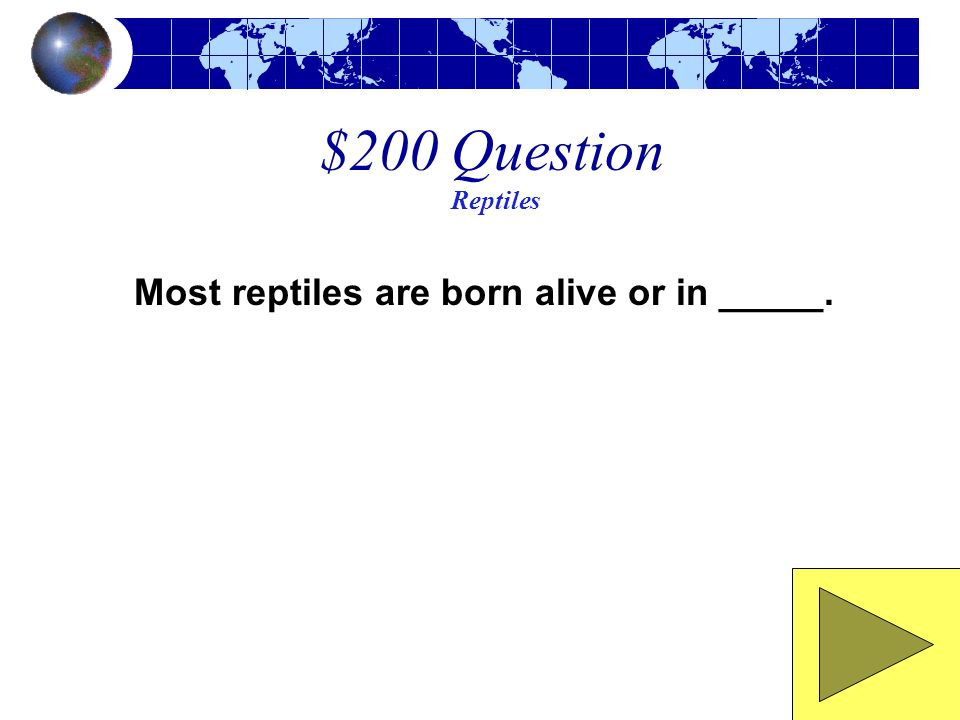 Most reptiles are born alive or in _____.