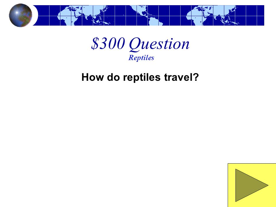 $300 Question Reptiles How do reptiles travel