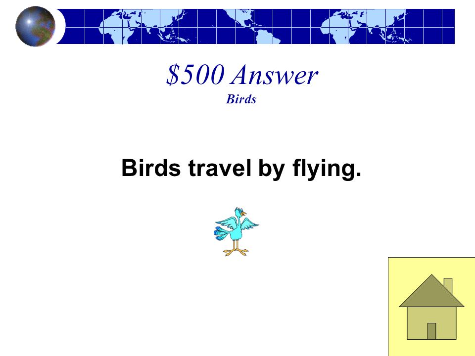 $500 Answer Birds Birds travel by flying.
