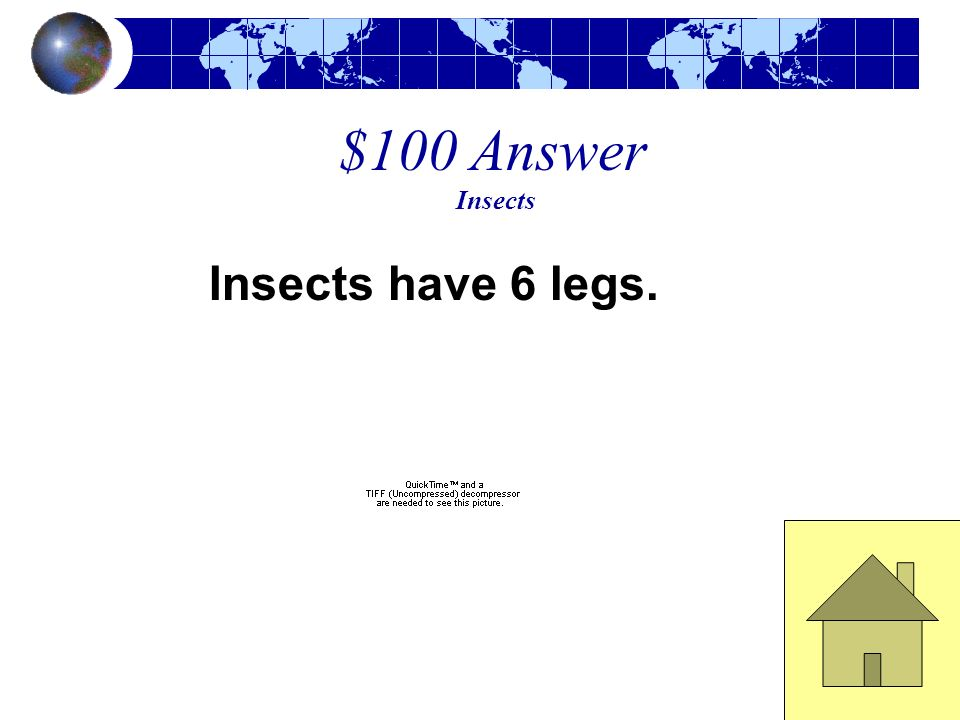 $100 Answer Insects Insects have 6 legs.