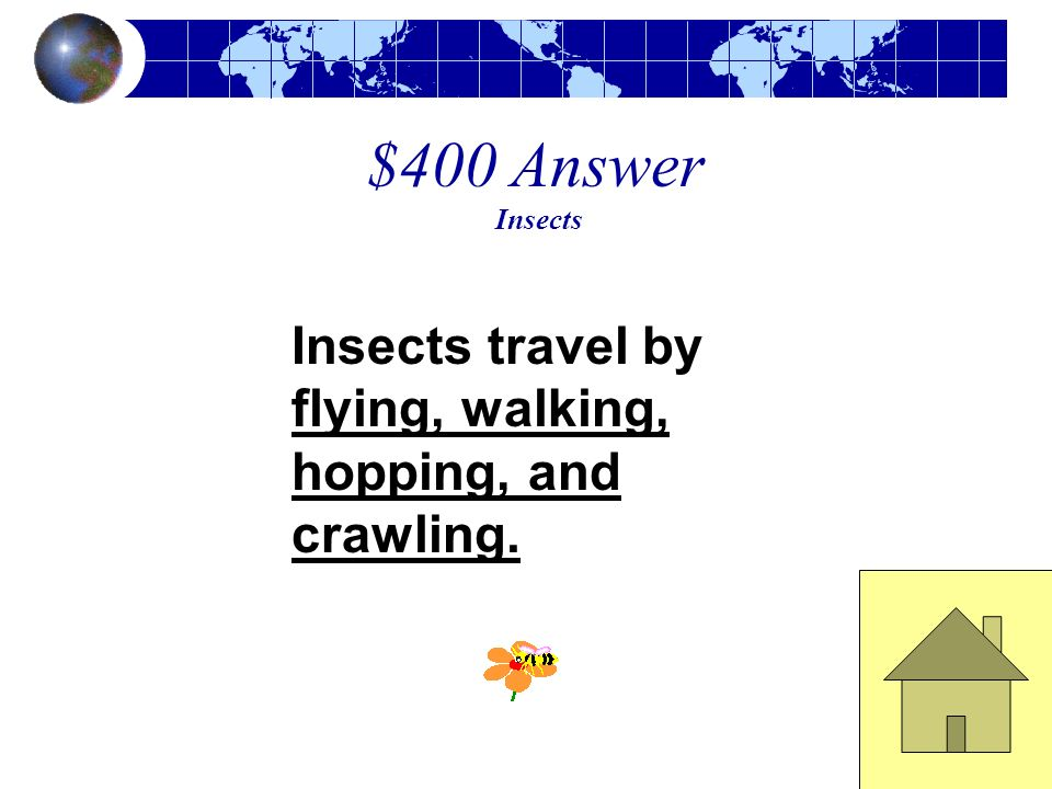 $400 Answer Insects Insects travel by flying, walking, hopping, and crawling.