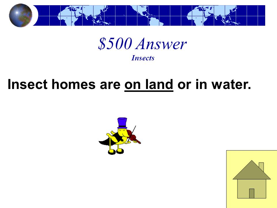 $500 Answer Insects Insect homes are on land or in water.