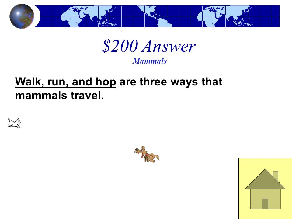 $200 Answer Mammals Walk, run, and hop are three ways that mammals travel.