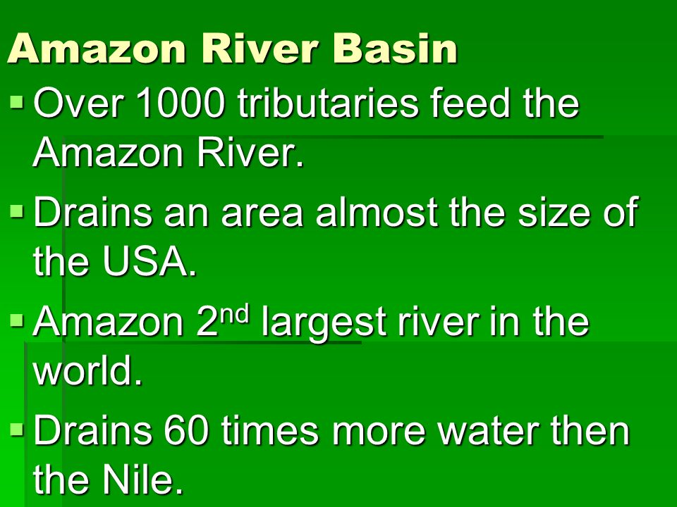 Amazon River Basin Over 1000 tributaries feed the Amazon River. Drains an area almost the size of the USA.