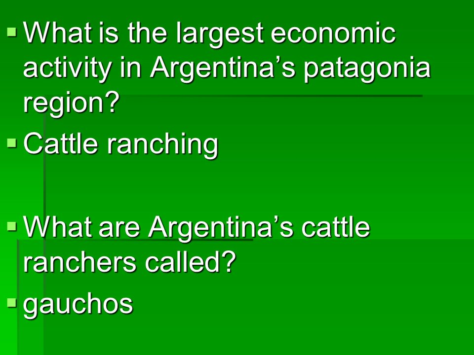 What is the largest economic activity in Argentina's patagonia region
