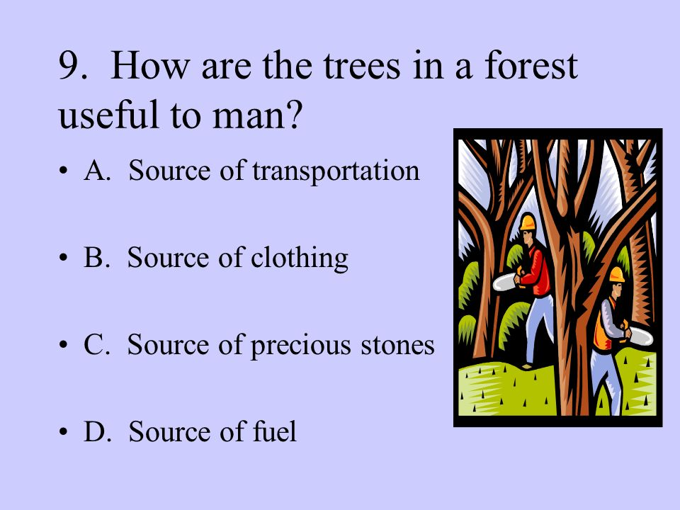 9. How are the trees in a forest useful to man