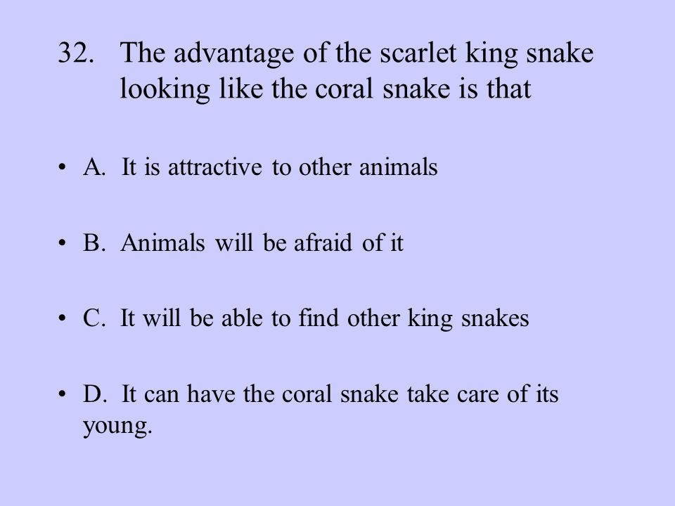 The advantage of the scarlet king snake looking like the coral snake is that