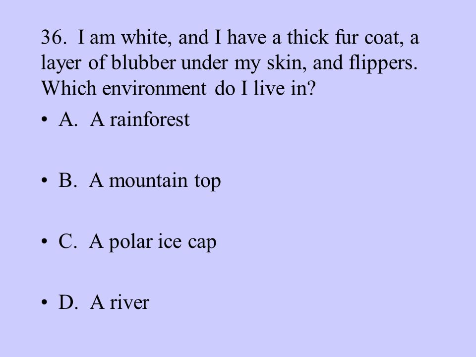 36. I am white, and I have a thick fur coat, a layer of blubber under my skin, and flippers. Which environment do I live in