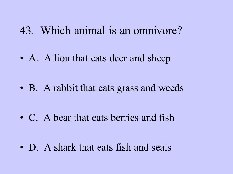 43. Which animal is an omnivore
