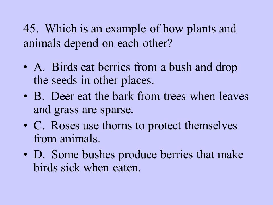 45. Which is an example of how plants and animals depend on each other