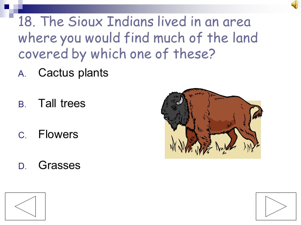 18. The Sioux Indians lived in an area where you would find much of the land covered by which one of these