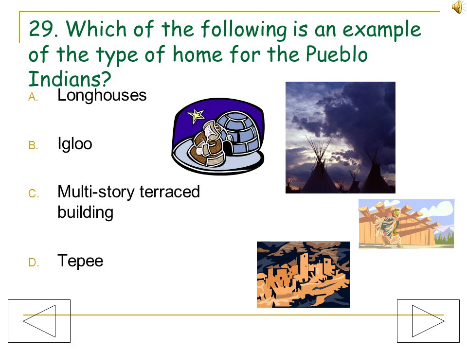 29. Which of the following is an example of the type of home for the Pueblo Indians