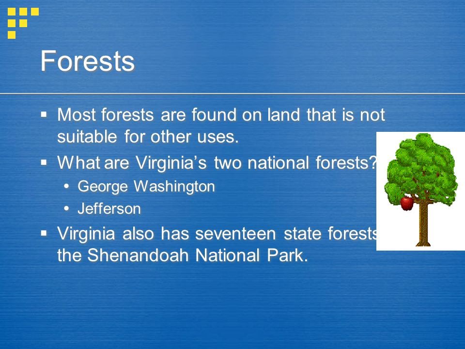 Forests Most forests are found on land that is not suitable for other uses. What are Virginia's two national forests