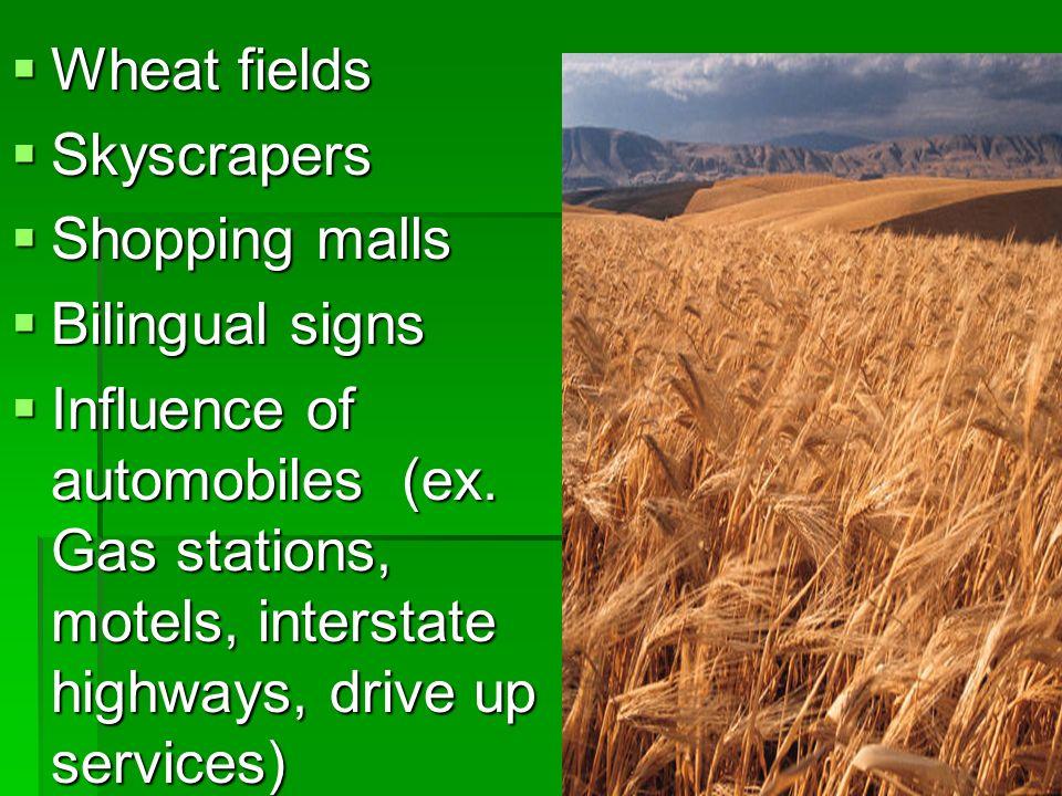 Wheat fieldsSkyscrapers. Shopping malls. Bilingual signs.