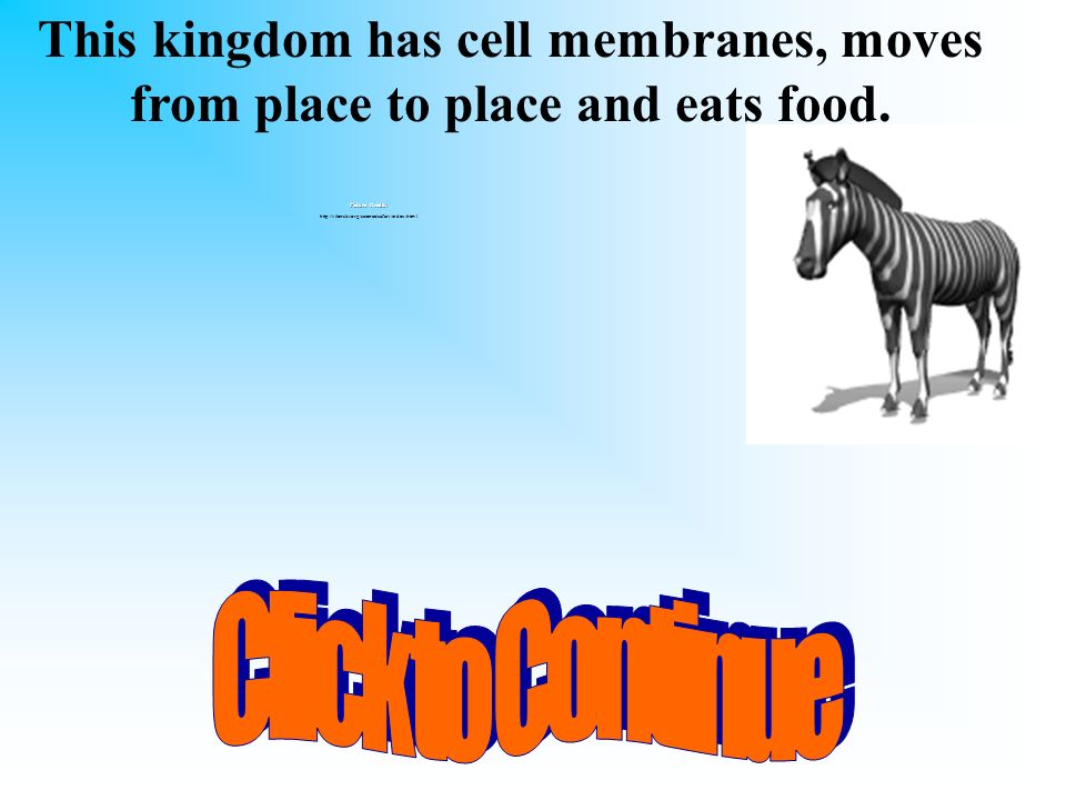 This kingdom has cell membranes, moves from place to place and eats food.