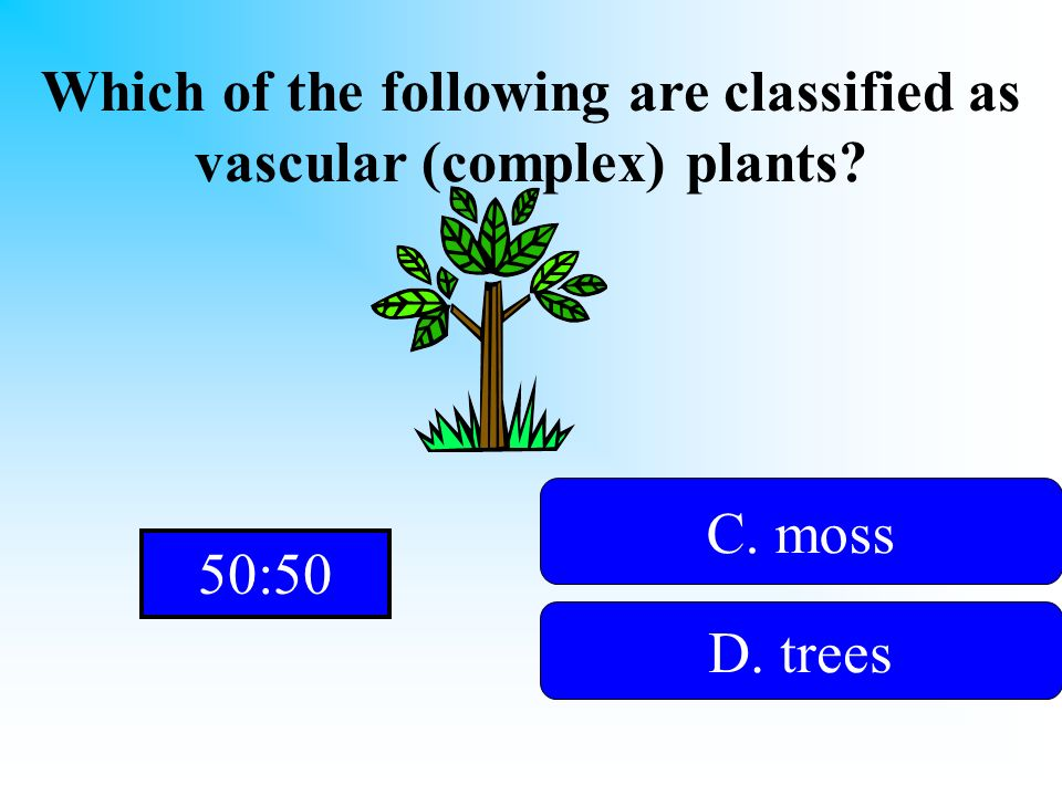 Which of the following are classified as vascular (complex) plants