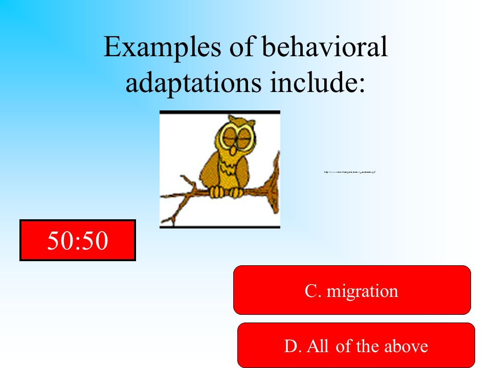 Examples of behavioral adaptations include: