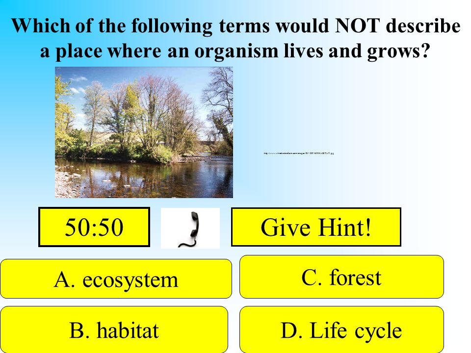 50:50 Give Hint! C. forest A. ecosystem B. habitat D. Life cycle