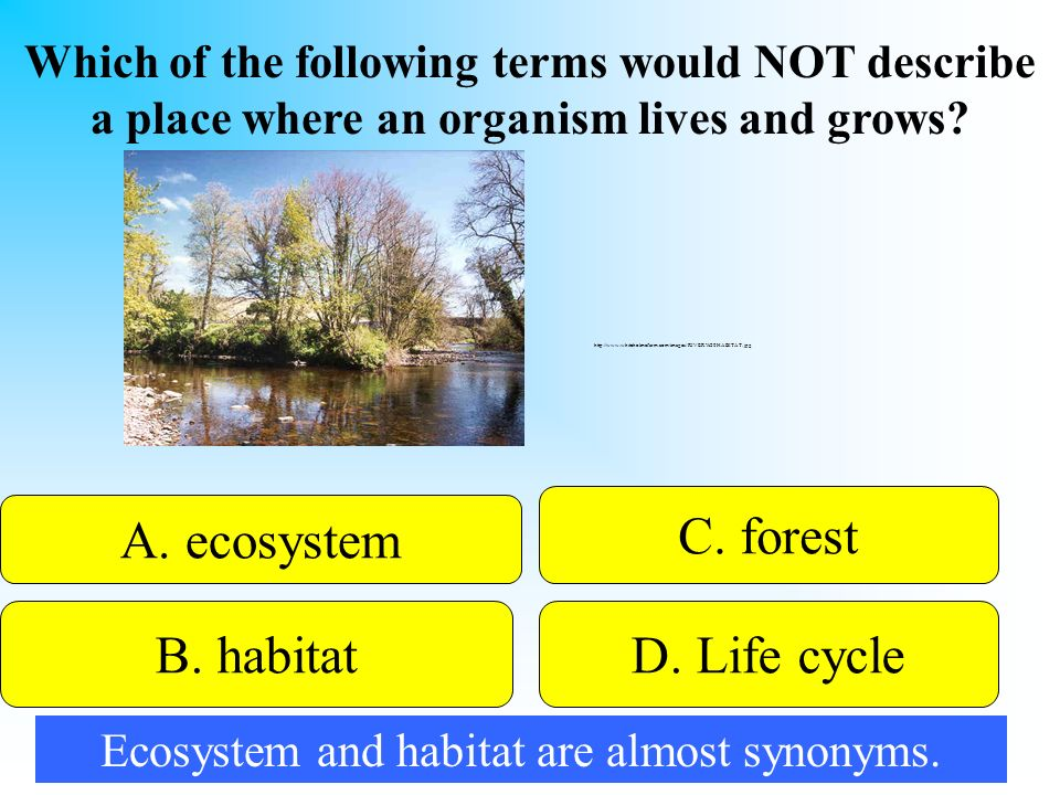 Ecosystem and habitat are almost synonyms.