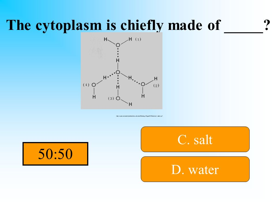The cytoplasm is chiefly made of _____