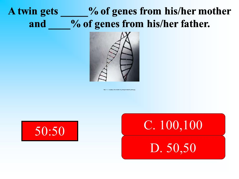 A twin gets _____% of genes from his/her mother and ____% of genes from his/her father.
