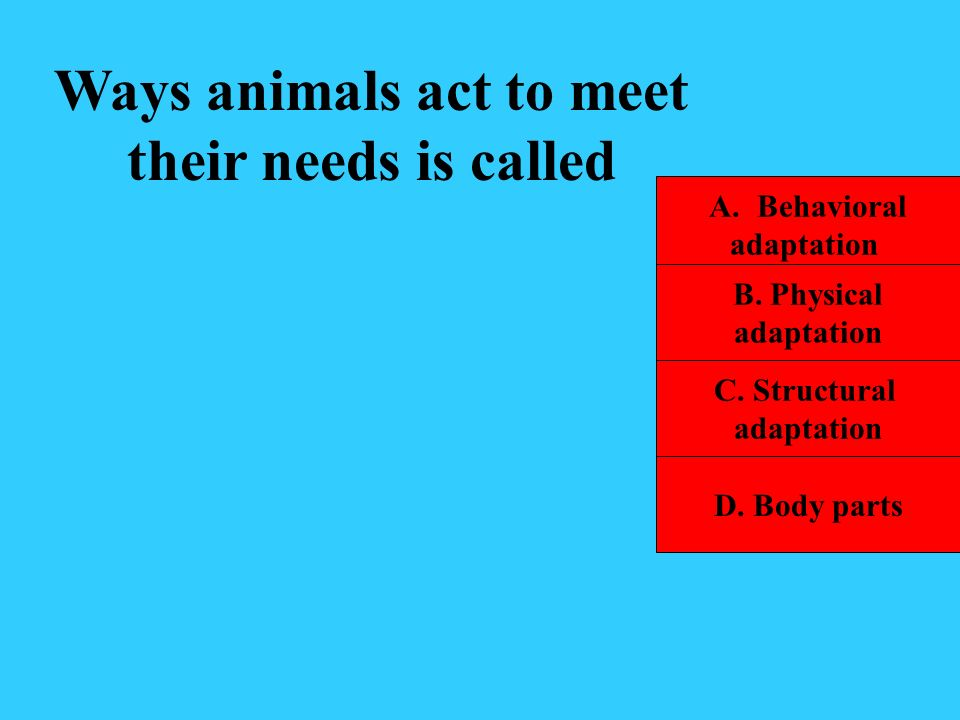 Ways animals act to meet their needs is called