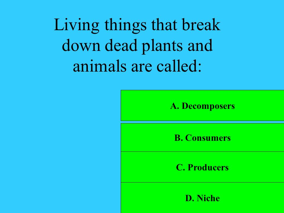 Living things that break down dead plants and animals are called: