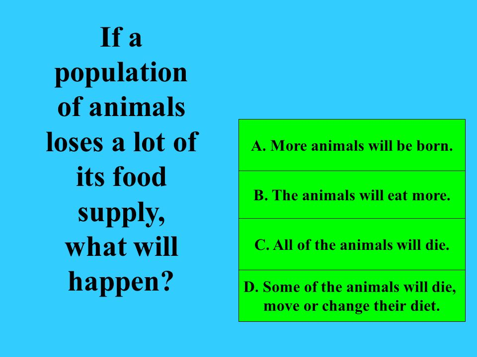 If a population of animals loses a lot of its food supply, what will happen