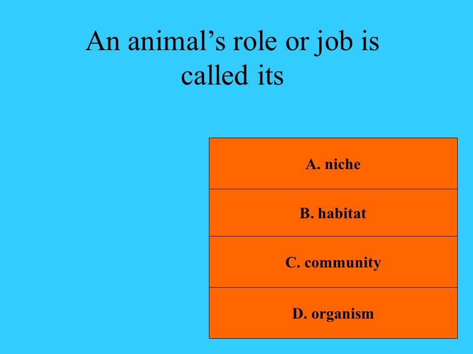 An animal's role or job is called its