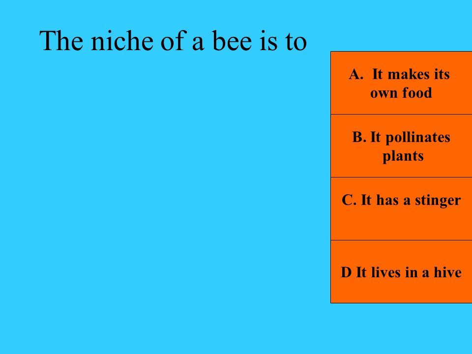 The niche of a bee is to It makes its own food B. It pollinates plants