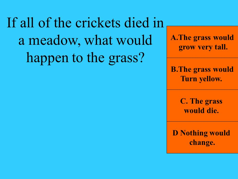 If all of the crickets died in a meadow, what would happen to the grass