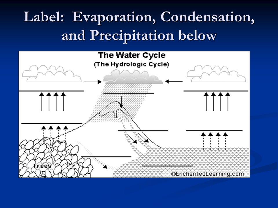 Label: Evaporation, Condensation, and Precipitation below