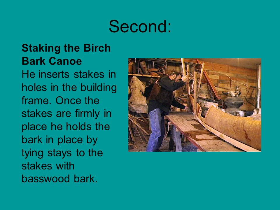 Second: Staking the Birch Bark Canoe