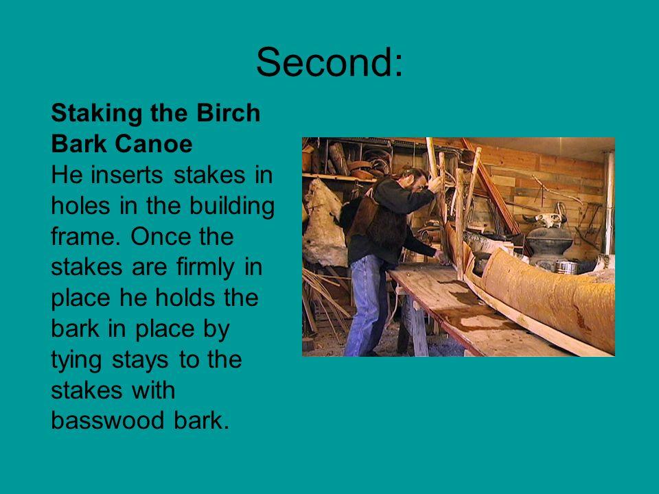 Second: Staking the Birch Bark Canoe