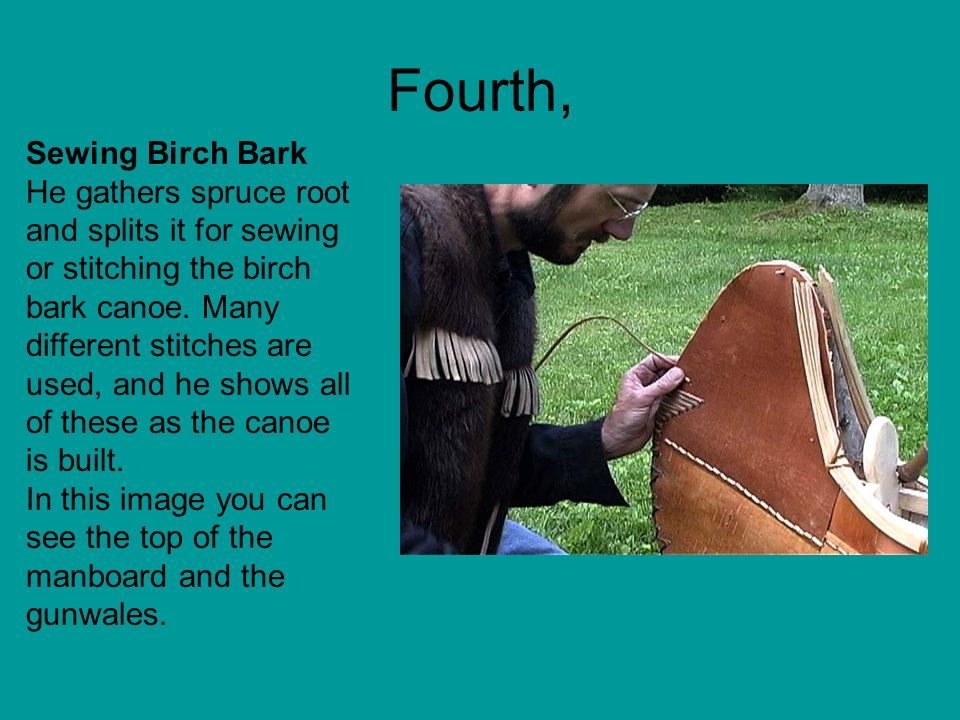 Fourth, Sewing Birch Bark