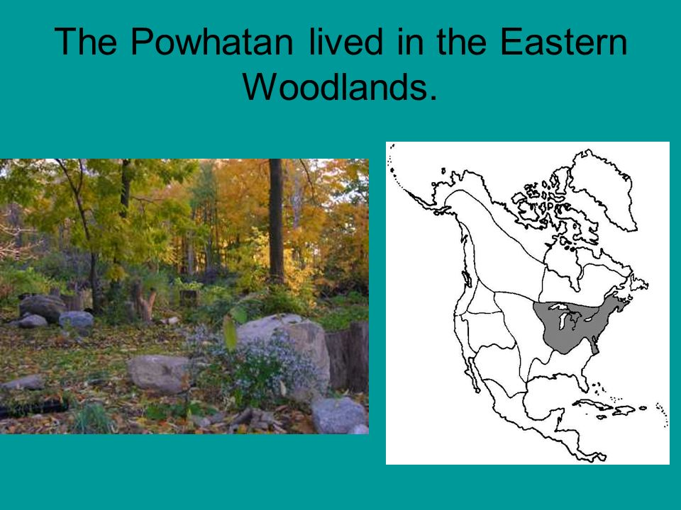The Powhatan lived in the Eastern Woodlands.