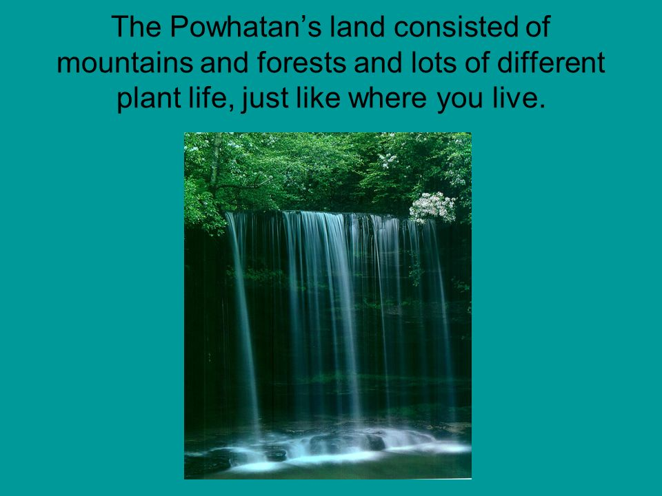 The Powhatan's land consisted of mountains and forests and lots of different plant life, just like where you live.