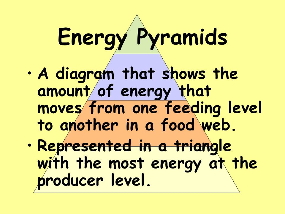 Energy Pyramids A diagram that shows the amount of energy that moves from one feeding level to another in a food web.