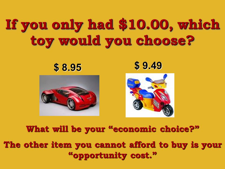 If you only had $10.00, which toy would you choose