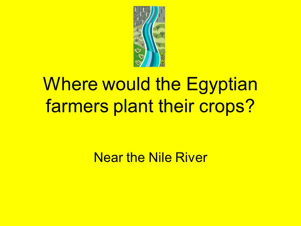 Where would the Egyptian farmers plant their crops