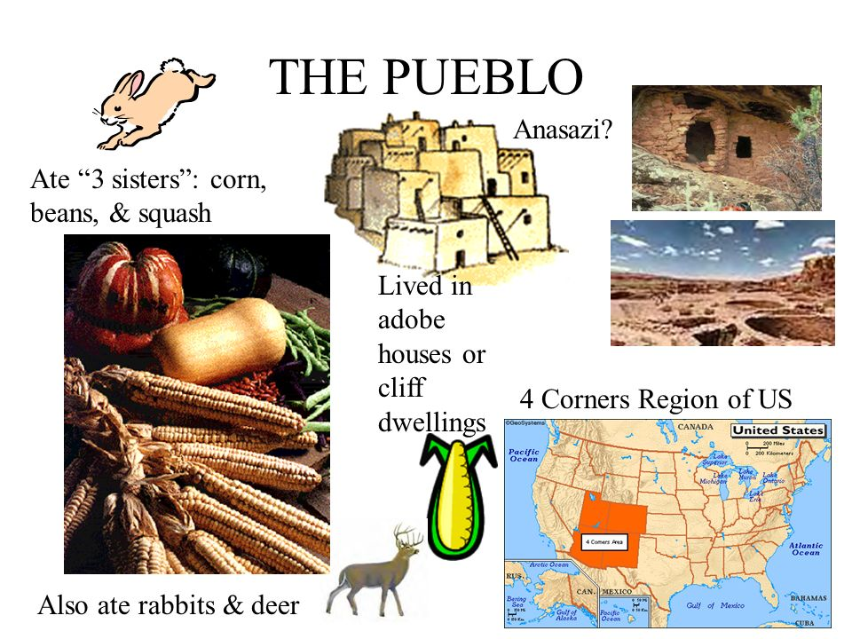 THE PUEBLO Anasazi Ate 3 sisters : corn, beans, & squash