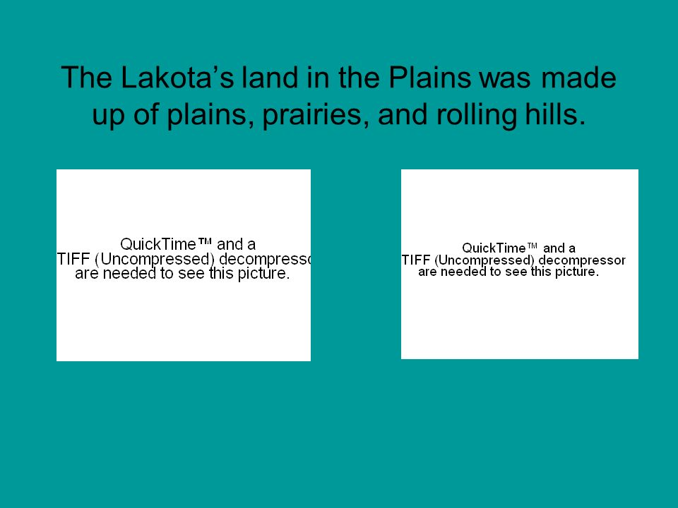 The Lakota's land in the Plains was made up of plains, prairies, and rolling hills.