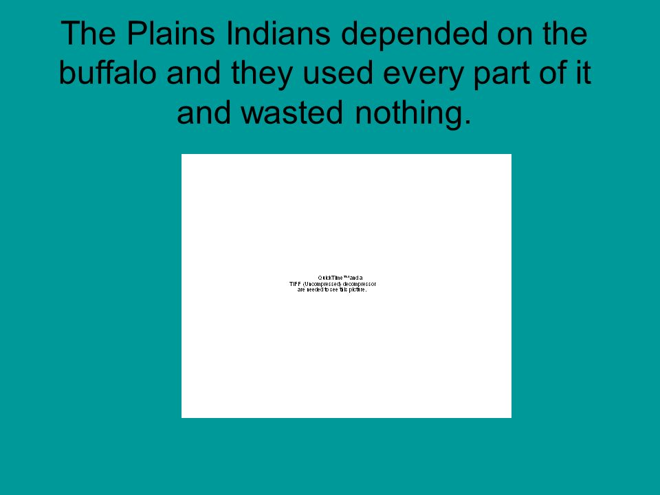 The Plains Indians depended on the buffalo and they used every part of it and wasted nothing.