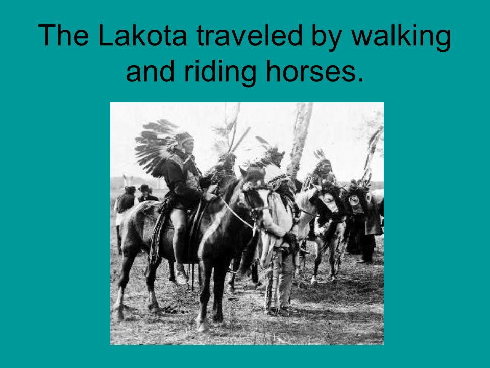 The Lakota traveled by walking and riding horses.